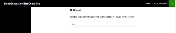 Example ugly 404 error page