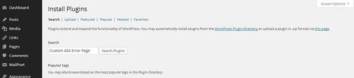 04-Add-404-Plugin